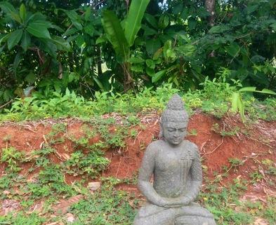 Medium urban retreat buddha in garden