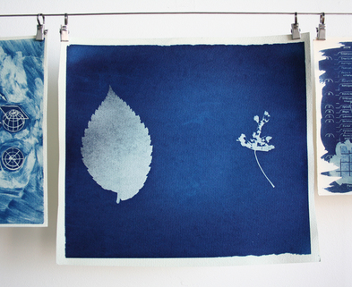 Medium photo cyanotypes