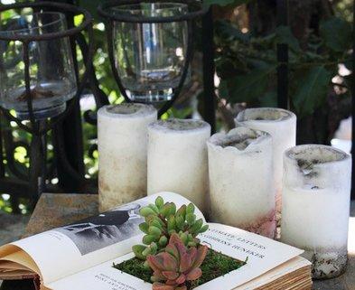 Medium succulent book