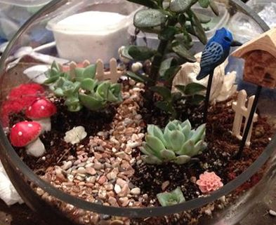 Medium fairy garden terrarium