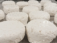 Small_brie-and-bleu-cheese---3-23-2014-at-12pm-256px-256px