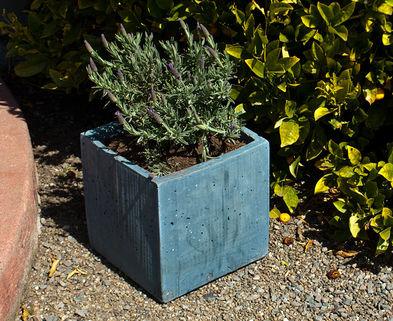 Medium concrete box planter