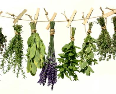 Medium dried herbs