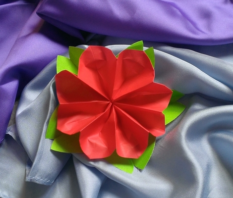 Origami classes chicago 6 origami in 60 minutes paper flowers origami classes chicago 6 origami in 60 minutes paper flowers dabble mightylinksfo Choice Image