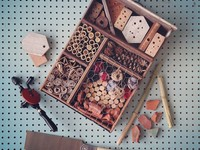 Small_insect_hotels