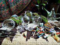 Small_terrariumsupplies2