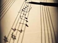 Small_music