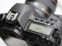 Small_slr_closeup_