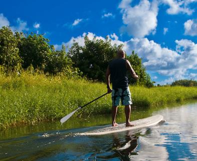 Medium paddleboarding