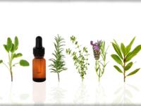 Small_essential_oils