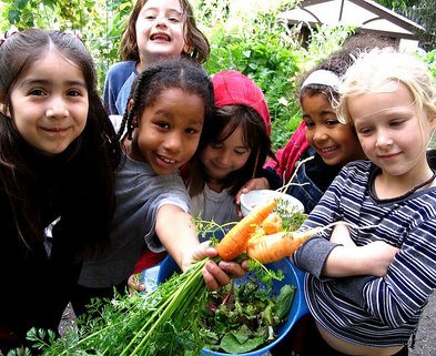 Medium healthy whole foods kids
