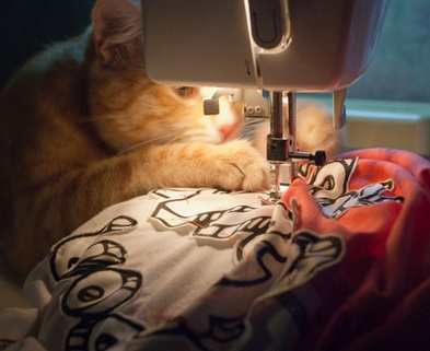 Medium cat sewing machine