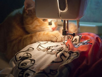 Small_cat_sewing_machine