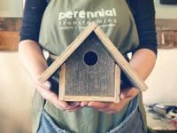 Small_bird_houses
