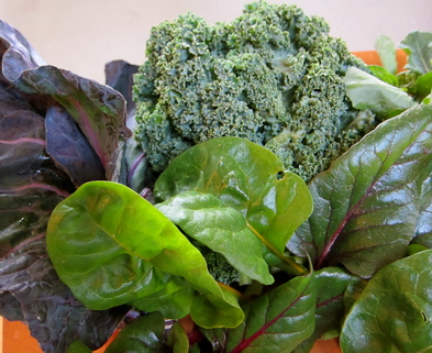 Medium mixed winter greens