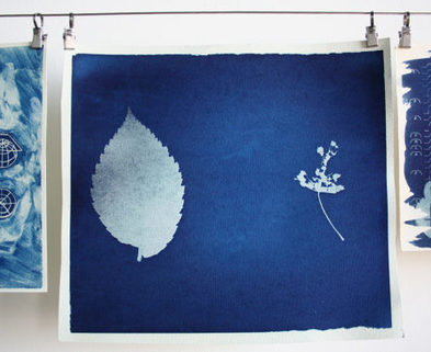 Medium cyanotypes 2 web 585x370
