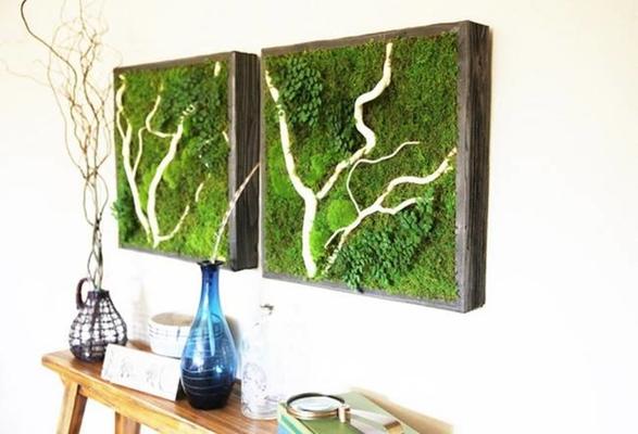 Carousel diy plant wall