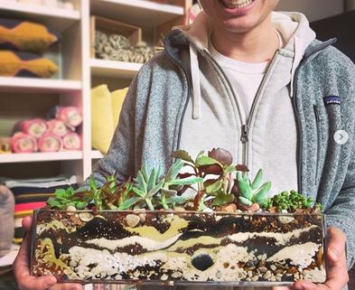 Medium succulent planter happy customer 1