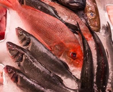 Medium seafood