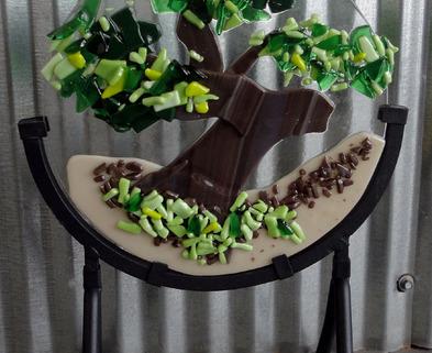 Medium trt bonsai