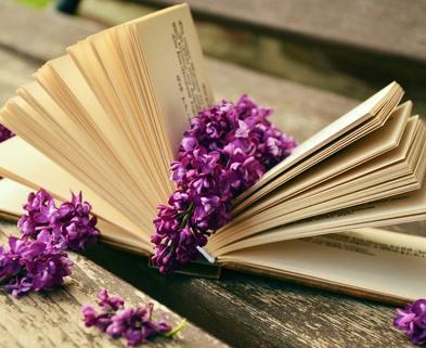 Medium book read relax lilac