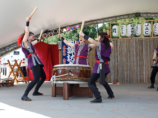 Carousel taiko drumming stl dabble