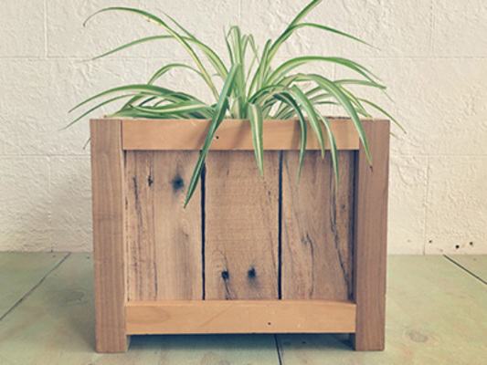 Carousel perennial wood planter box dabble st. louis perennial