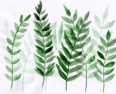 Medium leaveswatercolorhorizontal