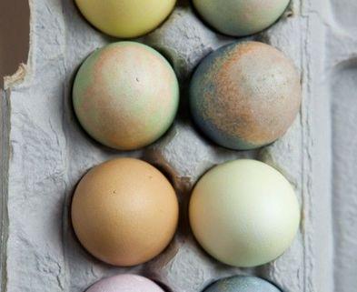 Medium eggs 3
