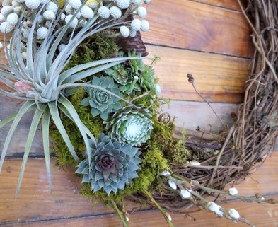 Medium succulent wreath