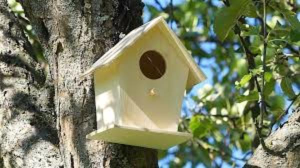 Carousel birdhouse