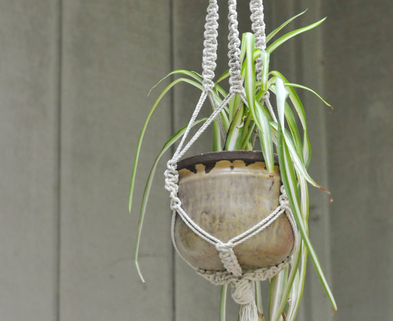 Medium modern macrame plant holder the works seattle dabble
