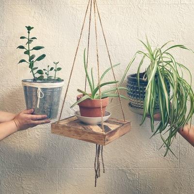 Carousel hangingplant2