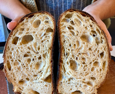 Medium sourdough for beginners seattle