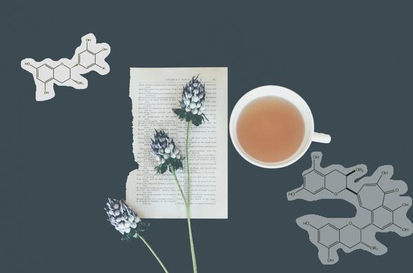 Carousel chemistry of tea debby hudson unsplash dabble