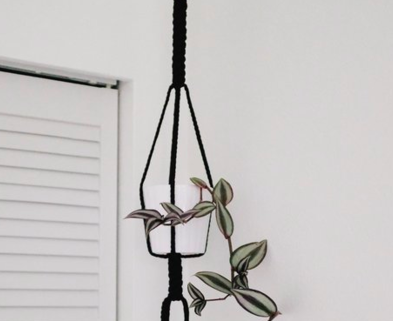 Medium bold macrame plant hanger the works seattle dabble