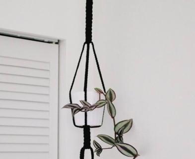 Medium bold macrame plant hanger the works seattle dabble
