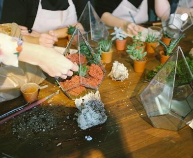 Medium terrarium workshop