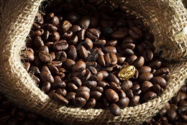 Carousel coffee education