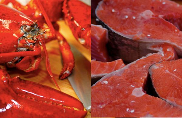 Carousel salmon lobster