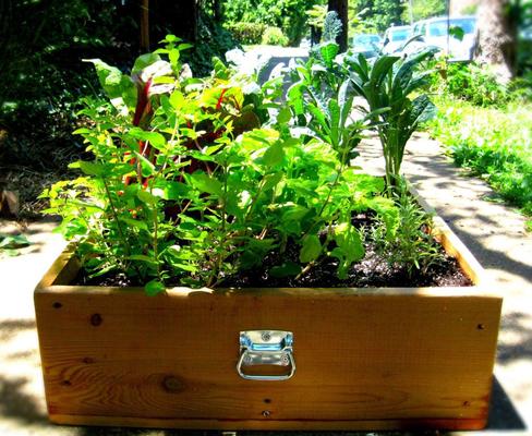 Carousel gardening urban