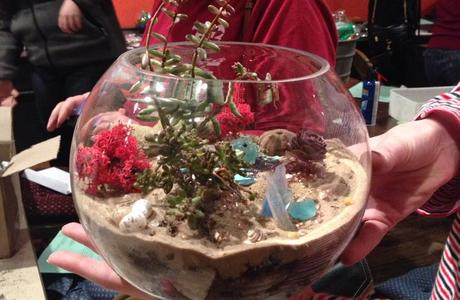 Medium sandy terrarium