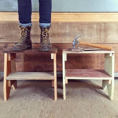Carousel step stools