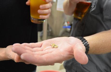 Medium brewery tour suqare2